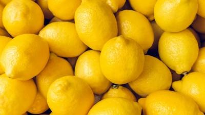 lemon_1H x W: